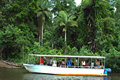 daintree-river-cruise