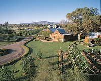 Hunter Valley Wineries - Peppertree